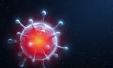 Parazit öldürücü bir ilacın korona virüsü yok ettiği keşfedildi