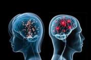 Kimliklerimiz beyin dalgalarıyla doğrulanacak!
