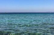 İlkel insanlar denize niçin dalıyordu