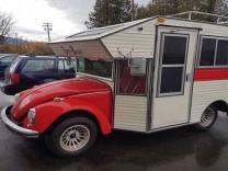 Tosbağa'dan karavan yaptılar