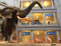 Online gezilebilen dünyaca ünlü müzeler