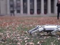 'Mini çita': Ters takla atabilen robot