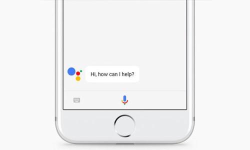 iPhone'a Siri'den sonra Google Asistan geldi