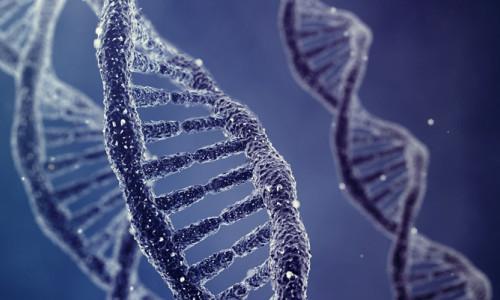 DNA'nın isimsiz kahramanı Rosalind Franklin