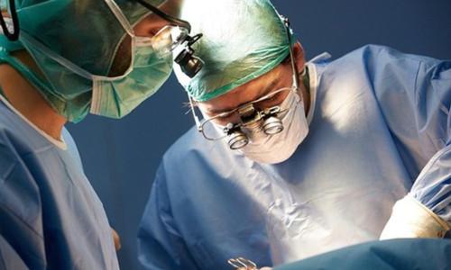 Hayvandan insana organ nakli çok yakın
