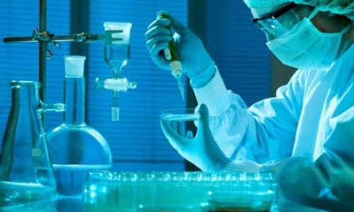 DNA testleri de 'Kara Cuma' indirimine girdi!