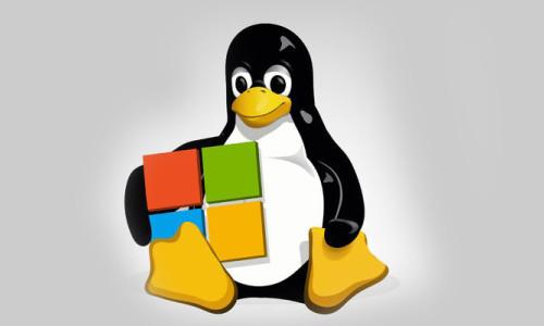Microsoft, Linux'a kucak açtı!