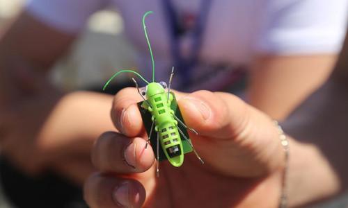 Alternatif enerjiyi 'robot cırcır böceği' ile anlatıyorlar