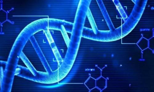 DNA robotlarının kontrolü için yeni sistem geliştirildi