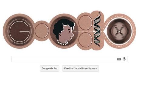 Google ünlü biyofizikçiyi doodle yaptı