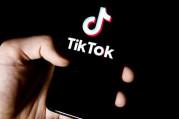 Hollanda'dan TikTok'a ceza