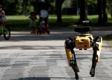 Boston Dynamics'in yeni robot projesi belli oldu