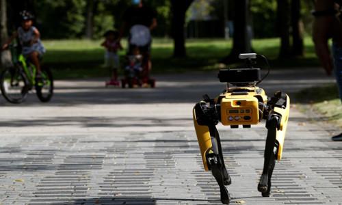 Boston Dynamics'in robot köpeği yeni numaralar öğrendi